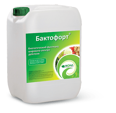 Бактофорт