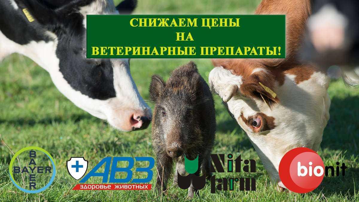 Снижаем цены на ветеринарные препараты!